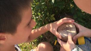 квест для детей: Поиск клада на даче (компас)